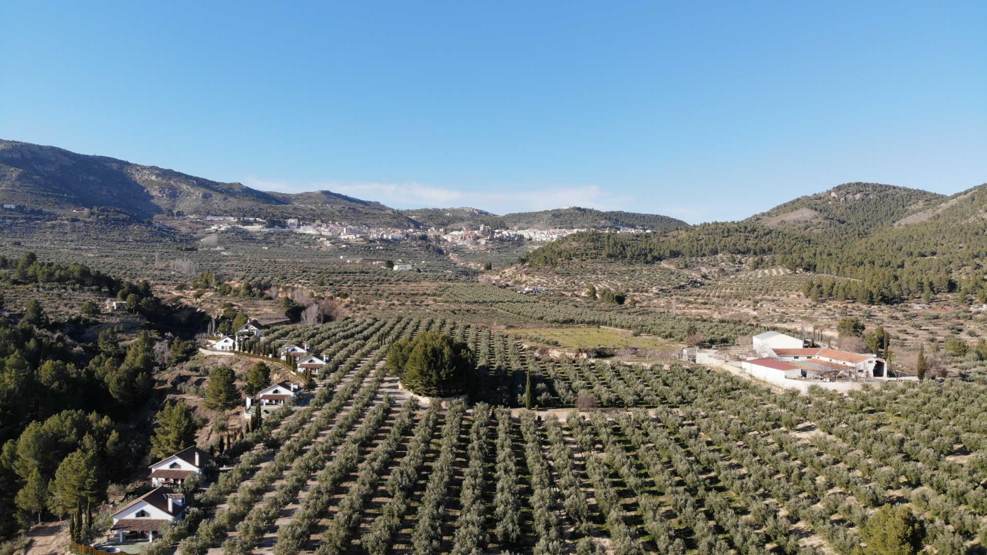 Vista aerea de Casas Rurales EL OLIVAR - YESTE